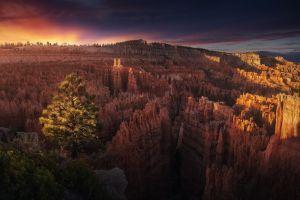 nature usa bryce canyon national park rock arizona landscape