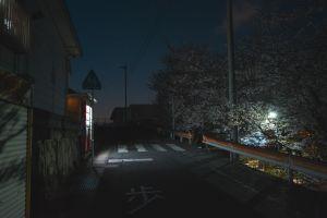 night japan cherry blossom moody asia urban street nagasaki