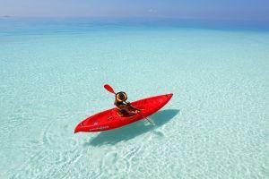 paddle sea nature