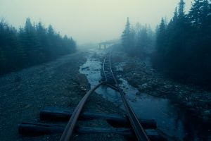 railway abandoned mist forest