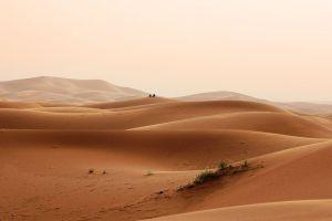 sand dunes nature landscape sand desert
