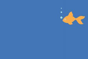 simple background simple minimalism gold fish art