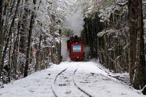 smoke snow covered ushuaia train nature patagonia