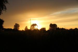 sunlight sunrise dark orange sky denmark outdoors