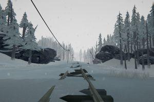the long dark snow video games