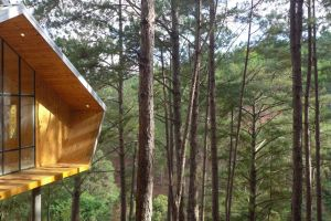 tree house cabin architecture modern