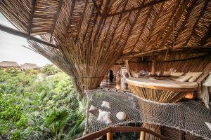 tropical architecture jungle