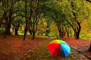 umbrella park photography
