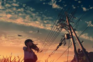 utility pole anime girls anime sunset sky clouds summer moescape