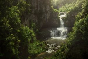 water nature waterfall outdoors plants
