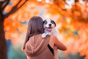 women dog animals women outdoors mammals