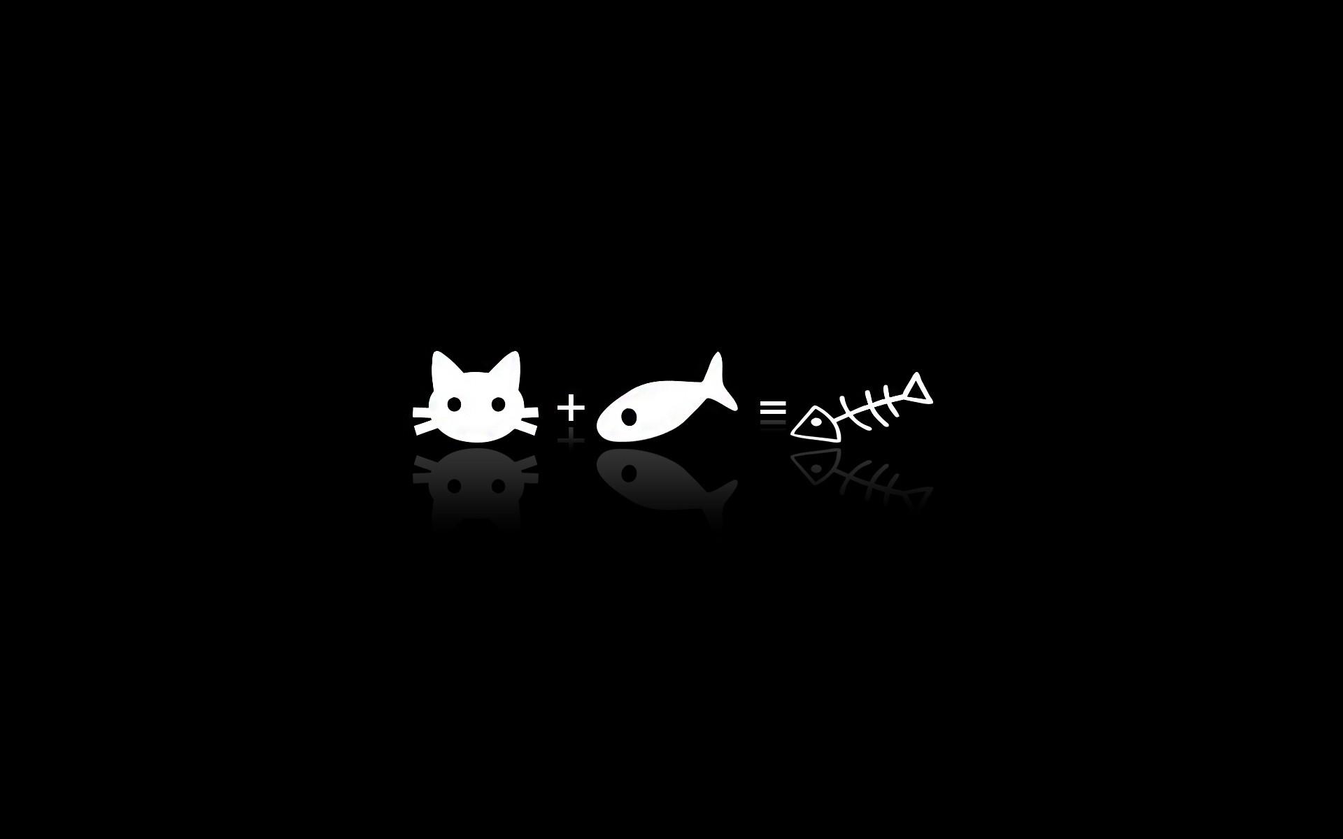 black humor cats minimalism