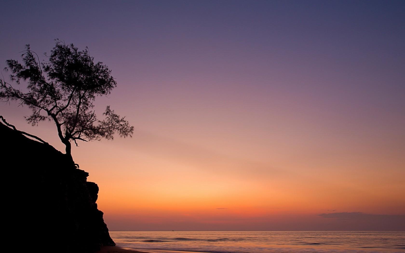 sky nature trees horizon