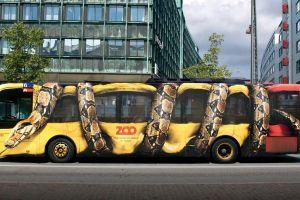 advertisements snake artwork commercial buses
