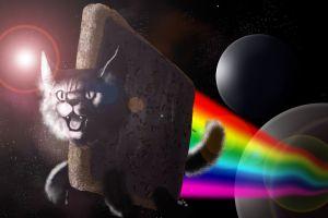 animals cats humor colorful space art digital art rainbows lsd nyan cat