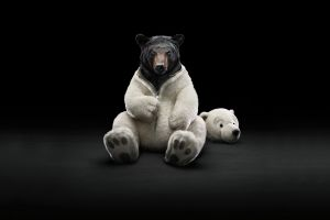 animals simple background black bears digital art