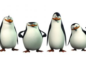 animated movies movies animals penguins of madagascar penguins