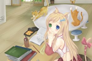 anime girls anime original characters heterochromia nekomimi