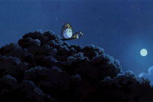 anime my neighbor totoro hayao miyazaki totoro