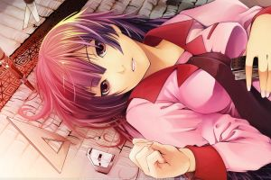 anime senjougahara hitagi anime girls monogatari series