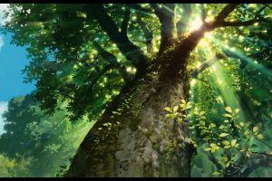 anime sunlight trees