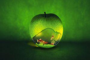 artwork apples fish digital art