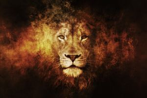 artwork lion texture big cats animals digital art
