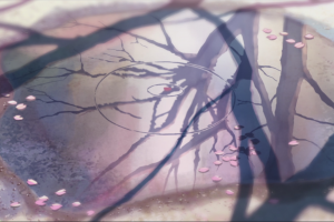 artwork puddle reflection flower petals 5 centimeters per second cherry blossom pink makoto shinkai  anime