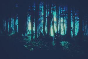 artwork trees cyan fantasy art forest