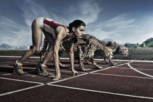 athletes run sport  digital art start animals women cheetahs sports