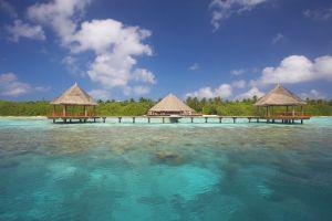 beach tropical island