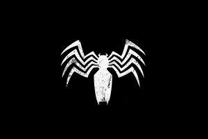black spider minimalism