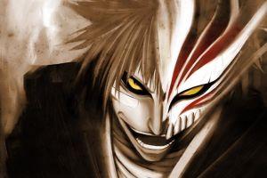bleach kurosaki ichigo anime hollow