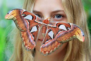 blonde moths women moth