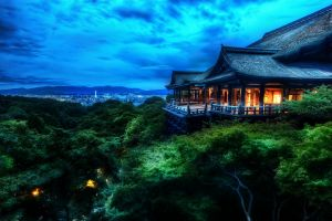 blue architecture hdr asia forest night trees