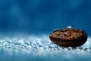 blue photography coffee beans coffee water drops macro