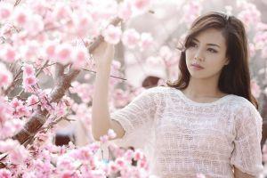 branch cherry blossom looking away japanese brunette sweater flowers model women asian japanese women