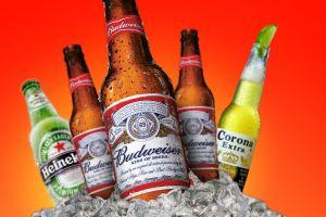 budweiser heineken beer alcohol corona