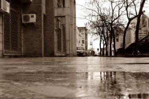 building street reflection sepia wet street