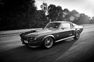 car ford mustang shelby ford mustang