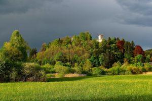 castle trees landscape nature