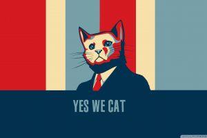 cats animals humor artwork hope posters