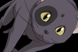 cats code geass anime
