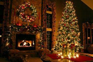 christmas tree holiday christmas flowers