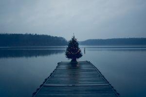 christmas tree landscape christmas tree nature lake pier