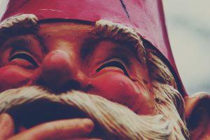 closeup smiling gnomes
