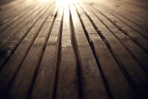closeup wood wooden surface timber texture