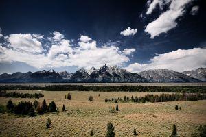 clouds nature pine trees sky mountains landscape plains
