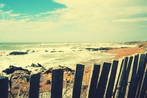 coast sea fence