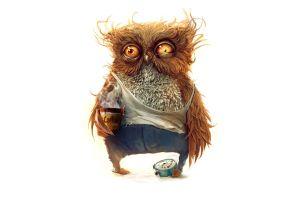 coffee artwork morning birds owl animals humor